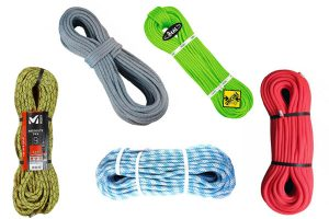 5 corde più intelligenti