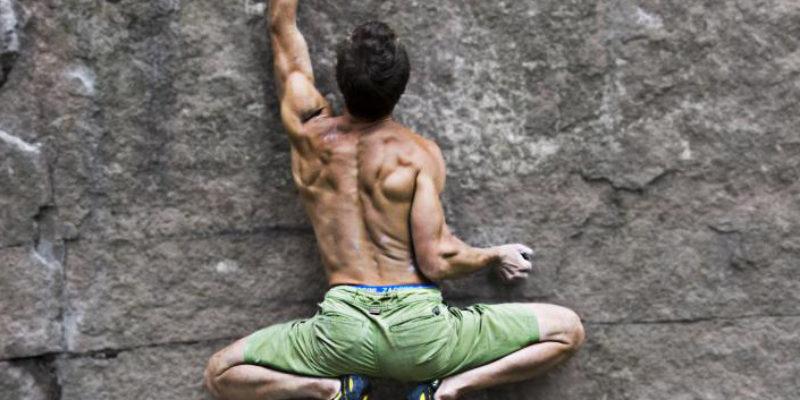 92ee157942f5e0 Muscoli antagonisti e loro utilizzo in arrampicata | Sestogrado